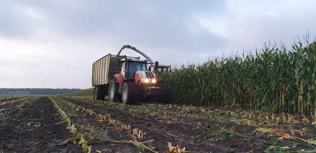 Maïshakselen hakselaar en silagewagen
